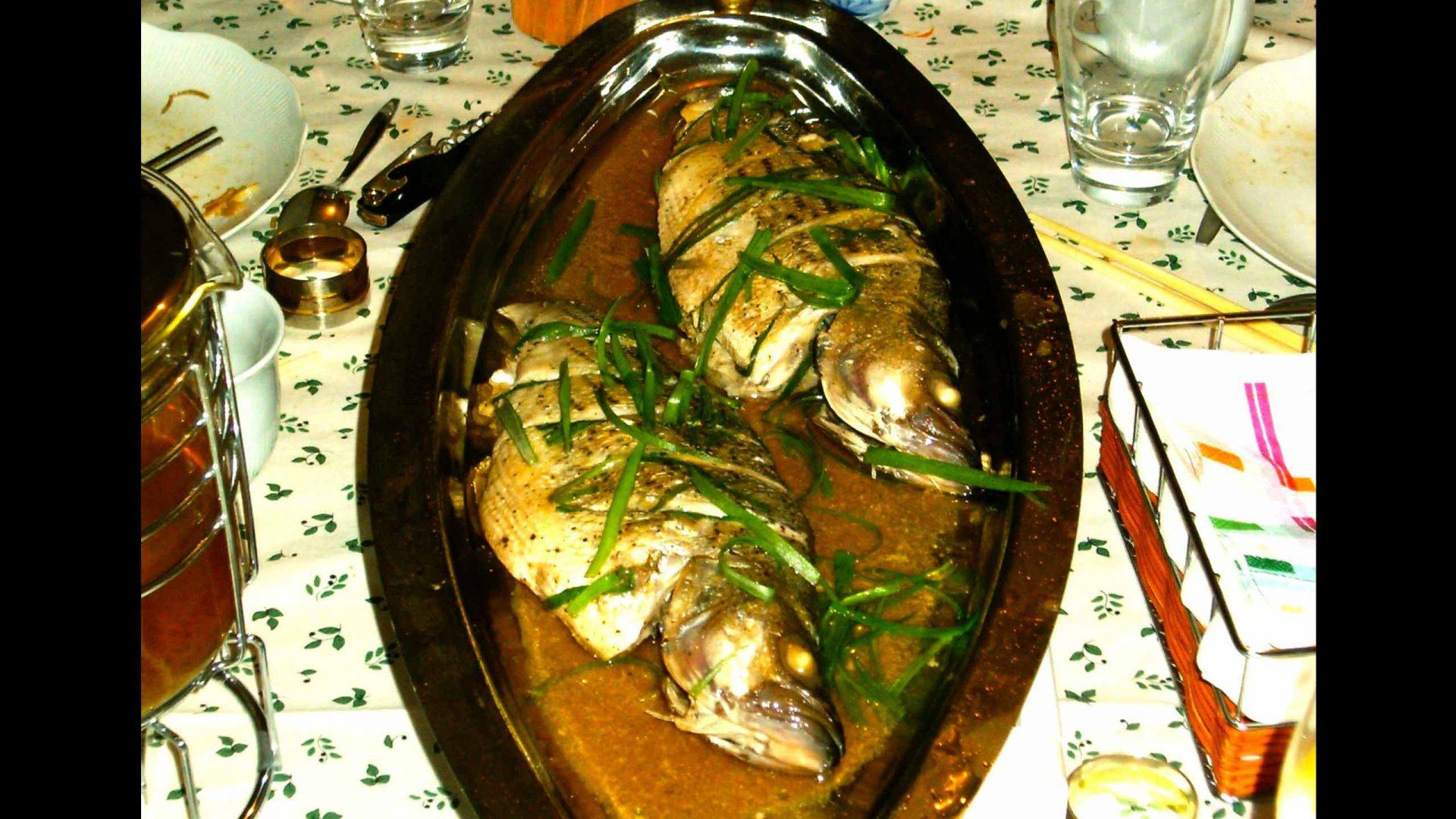 דג מאודה סיני